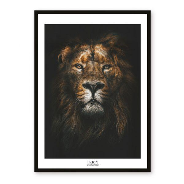 poster safari Sydafrika